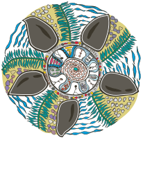 Logo for Minjerribah Camping - View website design